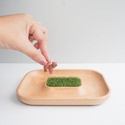 TOSMU 童心木|木製小物眼鏡收納盤 - 沙漠...