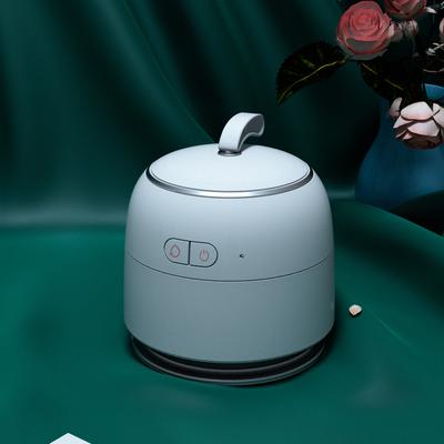 Iroon 無線便攜式超聲波蒸氣熨斗 (4色)